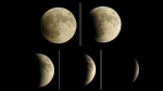 5 July 2020 Lunar Eclipse: Time, duration, visibility from India