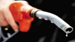 Fuel price hike: Petrol, diesel rates hold steady for 2nd consecutive day