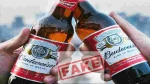 Fact check: Did a Budweiser employee really pee in the beer tanks?