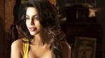 King Liar actress Natasha Suri tests positive for coronavirus