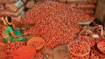 For second day no Onion auction at Nashik mandis