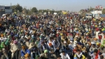 Explained: What the farmers' protest is all about