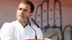 'Disparity' in wealth distribution stronger in BJP rule: Rahul Gandhi