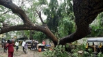 After 'Nisarga' in 2020, cyclone Tauktae batters Maharashtra's Raigad again