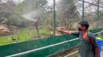 How to prevent further spread of SARS CoV-2 in zoo, captive wild animals?