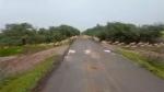 Viral video shows 3000 blackbucks crossing road at Gujarat's Bhavnagar; PM Modi calls it 'excellent'
