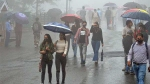 IMD issues yellow alert for thunderstorms, lightning for parts of Madhya Pradesh