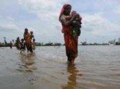 Aila kills 12 Bengal tigers; death toll above 100