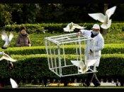 Delhi zoo shuts down amid bird flu scare