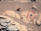 Alien rock brimming with traces of life on Mars