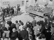 Dutch researchers say new mass grave found at Nazi camp