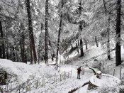 Shimla warmer than Chandigarh, Amritsar