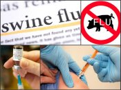 764 swine flu deaths in Brazil this year