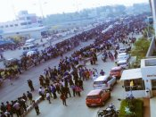 Chennai: Massive protest continues in support of Jallikattu at Marina Beach