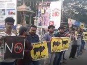 Will adopt all measures to ban PETA: Sasikala says as Jallikattu protests intensify