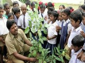 Chennai: Bus conductor makes it to CBSE books after planting 38,000 trees