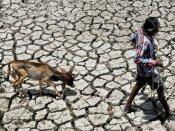 Marathwada farmers accuse IMD of conspiracy, file complaint