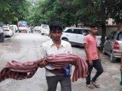 Gorakhpur tragedy: Allahabad HC seeks probe findings from UP govt