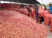 Once onion price rise saw govts tumble; this time fall in price is threatening the leaders
