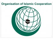 India slams Islamic organisation for comments on Kashmir