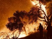 California wildfire torches forest, forces new evacuations