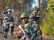 J&K: 4 terrorists killed, para commando martyred in Shopian encounter