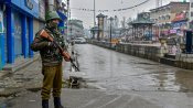 Article 370 was regressive and separated J&K from the rest of India