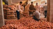 MMTC places order for 11,000 tonnes of onion from Egypt to boost supply, control prices