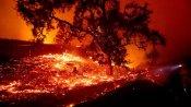 California blaze forces evacuations as wind spurs blackouts
