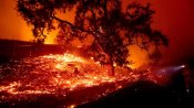 California blaze forces evacuations as wind spurs blackouts