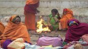 Cold wave: IMD issues yellow alert for several places in Rajasthan