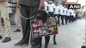 Surat Police takes out Covid-19 awareness drive with animals