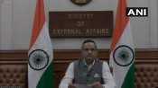 Pakistan's continuation in FATF grey list vindicates India's position: MEA