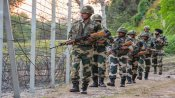 Pak targets villages, forward posts along IB, LoC