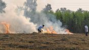 SC stays order appointing Justice Lokur to monitor stubble burning after Centre assures law