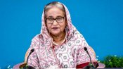 India deeply respects Sheikh Hasina's sentiments on Pakistan