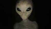 'Lemonhead' Alien tried to lure two boys: MoD file