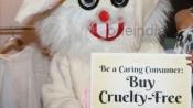 PETA's cruelty over animals shocks the world: Reports