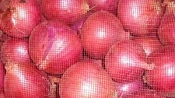 India hit by sky high tomato and onion prices