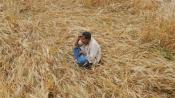 Maha shocker! Unable to feed children, woman farmer sets herself ablaze