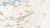 Naga's grand Hornbill Festival begins
