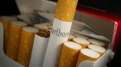 Cigarette cos gain ground despite duty hike, ITC surges 9 pc