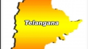Telangana govt launches IT policy
