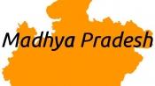 6 'sadhus' injured in clash at Kumbh mela