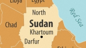 13 dead in Sudan road crash: police