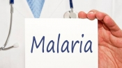 Malaria toll in Delhi rises to 6