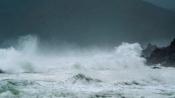 Vietnam typhoon: Widespread floods wreak havoc, death toll mounts to 44