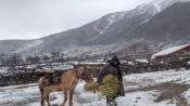 Fresh snow in mountains, rains lash plains of J&K