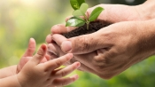 World Enivronment Day: One crore sapling planted in Kerala