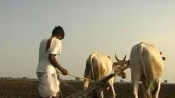 Farmer who sent Rs 1,064 to PMO to protest poor crop price asked to pay the money online
